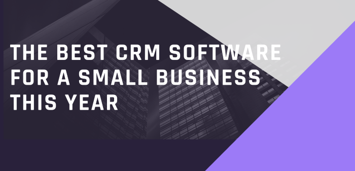 The Best CRM Software For A Small Business This Year