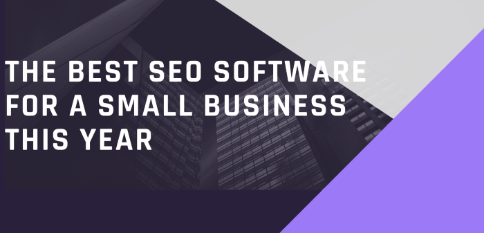 The Best SEO Software For A Small Business This Year