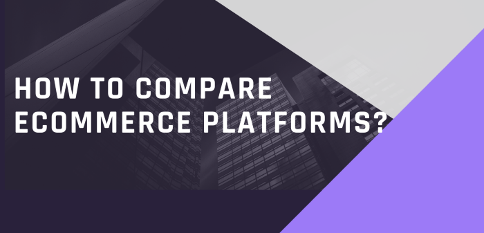 How To Compare Ecommerce Platforms, The Top Ten