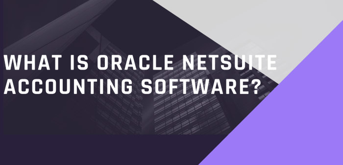 What Is Oracle Netsuite Accounting Software?