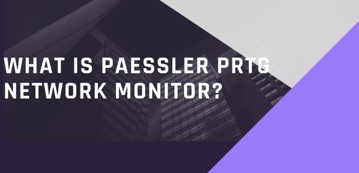 What Is Paessler PRTG Network Monitor?